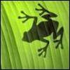 Аватар для Stasuk